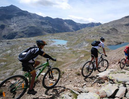 Mountain bike in Alta Valtellina
